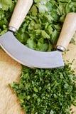 Mezzaluna and herbs Stock Photography