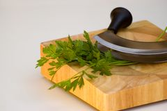 Mezzaluna and parsley Stock Images