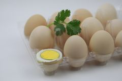Mezzi uova sode ed uova bianche Chiuda, animale Fotografia Stock