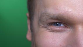 Mezzo ritratto del fronte del primo piano di giovani rotture castane dell'uomo d'affari in un sorriso su fondo verde video d archivio