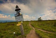 Mezzogiorno di estate nella catena montuosa di Bieszczady Fotografia Stock Libera da Diritti