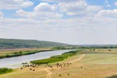 Mezzogiorno sul fiume paesaggio fotografie stock libere da diritti