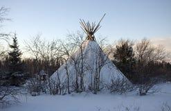 Mezzogiorno in tundra Immagine Stock
