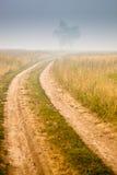 mgła krajobraz fotografia stock