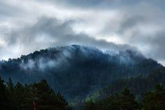 Mgła na halnych wierzchołkach Halny Altai obrazy royalty free