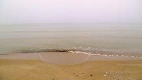 mgła na plaży zdjęcie wideo