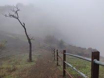 Mgła na wzgórze stacji samotnej drzewnej natury wędrówki ściany poręcza mieszanki pięknej dolinie zdjęcie royalty free