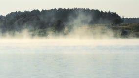 Mgła nad jeziorem lub rzeką w lecie zbiory wideo