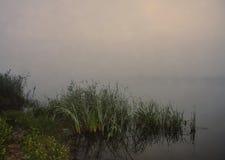 Mgła nad rzeką, lato ranek Fotografia Royalty Free