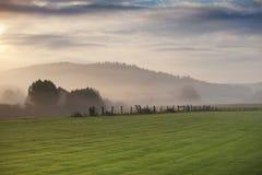 Mgła nad zieloną łąką i chmurnym niebem Zdjęcia Royalty Free