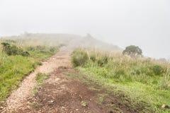 Mgła nakrywkowy jar zdjęcie royalty free