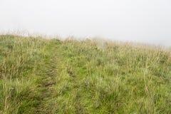 Mgła nakrywkowy jar obrazy royalty free