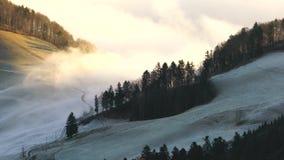 Mgła przepływ w śnieżnym lesie zbiory wideo