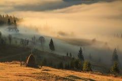 Mgła przy wschodem słońca Fotografia Royalty Free