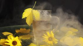 Mgła przychodzi na przejrzystym szklanym kubku mokrym od deszczu gorący herbaciani stojaki pośród jesień krajobrazu: yellowed fa zbiory