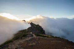 mgła słońca Zdjęcie Royalty Free