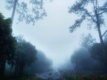 Mgła sposób obrazy royalty free