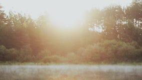 Mgła unosi się nad wodą, jezioro Piękny ranku krajobraz przy lasowymi słońce promieniami błyszczy zbiory