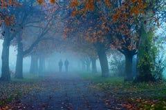 Mgła w Gdańskim mieście Fotografia Royalty Free