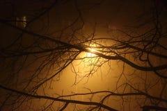 Mgła w mieście Obrazy Royalty Free