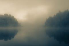 Mgła w ranku lesie Obraz Stock