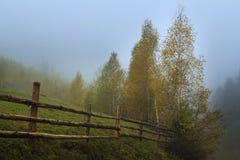 Mgła w wsi Zdjęcia Stock
