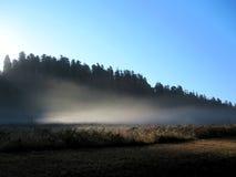 Mgła zaświecająca słońcem Obraz Stock