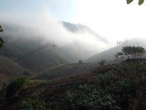 Mgła zakrywał ranek dolinę Fotografia Royalty Free