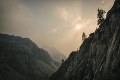 Mgławy widok, królewiątko jaru park narodowy Obraz Stock