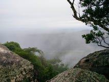 Mgłowa dolina z drzewami, skałami i mglistym nieba tłem, zdjęcie royalty free