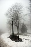 mgłowa dzień zima Zdjęcie Stock