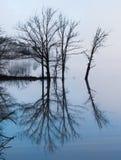 Mgłowa odbijająca wyspa na spokojnej szklistej wodzie Zdjęcie Royalty Free