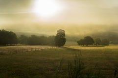 Mgłowe łąki w Galicia Hiszpania zdjęcie stock
