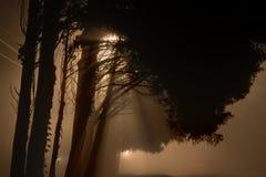 Mgłowe latarnie uliczne przy północą Zdjęcia Royalty Free