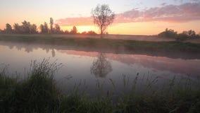 Mgłowy świt nad piękną wiosny rzeką zbiory wideo