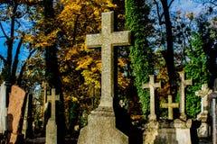 Mgłowy cmentarz przy nocą Stary Straszny cmentarz w blasku księżyca przez drzew Fotografia Stock
