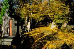 Mgłowy cmentarz przy nocą Stary Straszny cmentarz w blasku księżyca przez drzew Zdjęcia Stock