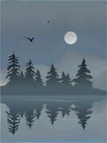 mgłowy jezioro Zdjęcie Stock