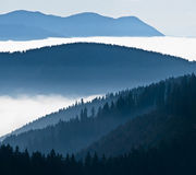 mgłowy krajobraz Obrazy Stock