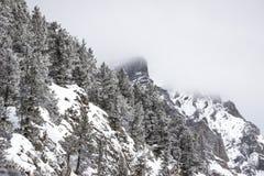 Mgłowy las w śnieżnej górze Fotografia Royalty Free