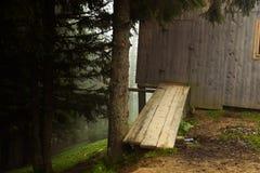 Mgłowy lato ranek zdjęcie stock