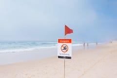 Mgłowy ranek na australijczyk plaży Obrazy Stock
