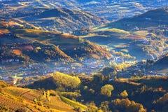 Mgłowy ranek nad winnicami w Włochy i wzgórzami. Zdjęcia Royalty Free