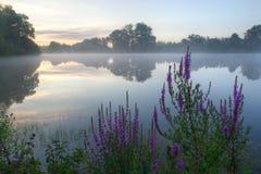 Mgłowy wschód słońca Obrazy Royalty Free