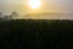 mgłowy wschód słońca Obrazy Stock