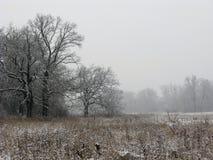 Mgłowy zima krajobraz Fotografia Royalty Free