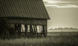 Mgłowy zmierzch zdjęcie royalty free