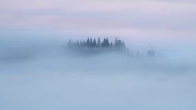 mgły mgły Zdjęcie Stock