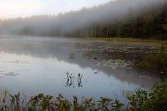 mgły nad jezioro obraz stock