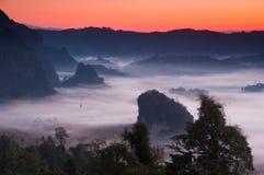 mgły ranek światło słoneczne obraz stock